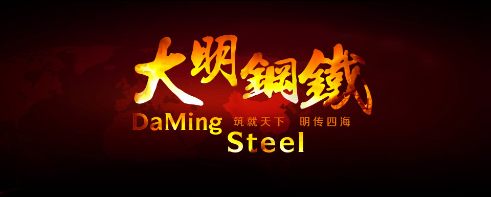 Guangdong Daming Steel Industrial Co. Ltd.